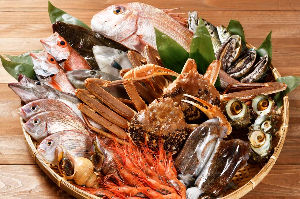 佐渡の旬の鮮魚